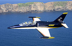 Fly the L-39 fighter jet trainer in the US